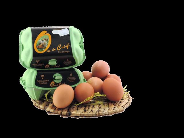 ous-calaf-supermercats-supermas-igualada